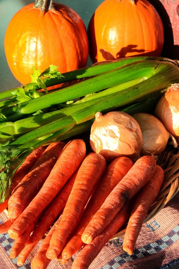 Carrots, celery and onion for vegetable stock recipe