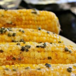 Fresh and crunchy, Parmesan Chive Corn on the Cob is the classic side dish recipe - hot and buttery for your next BBQ .Grilled or baked, it is perfect served with ribs and chicken!