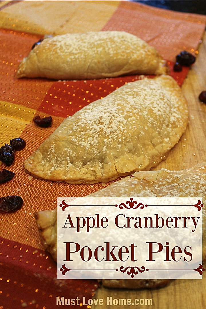apple cranberry pocket pie - apple pie filling, dried cranberries and a flaky crust!