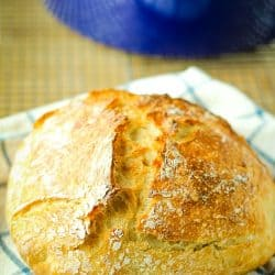 Faster Rustic No-Knead Bread, made with easy pantry ingredients. This easy recipe makes fresh, homemade bread that you can serve with dinner tonight!