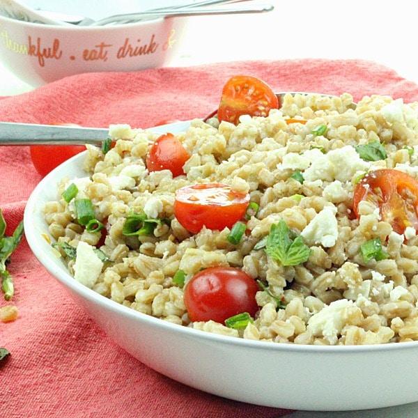 Greek Farro Tomato Salad in a white bowl