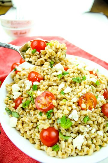Greek Farro Tomato Salad with Feta Cheese is packed with nutty flavor, protein and nutrients. Ready in just 20 minutes, this versatile salad is a perfect pairing for any meal.