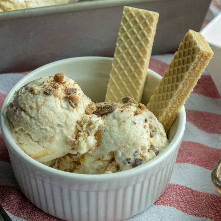 No Churn Peanut Butter Crunch Ice Cream