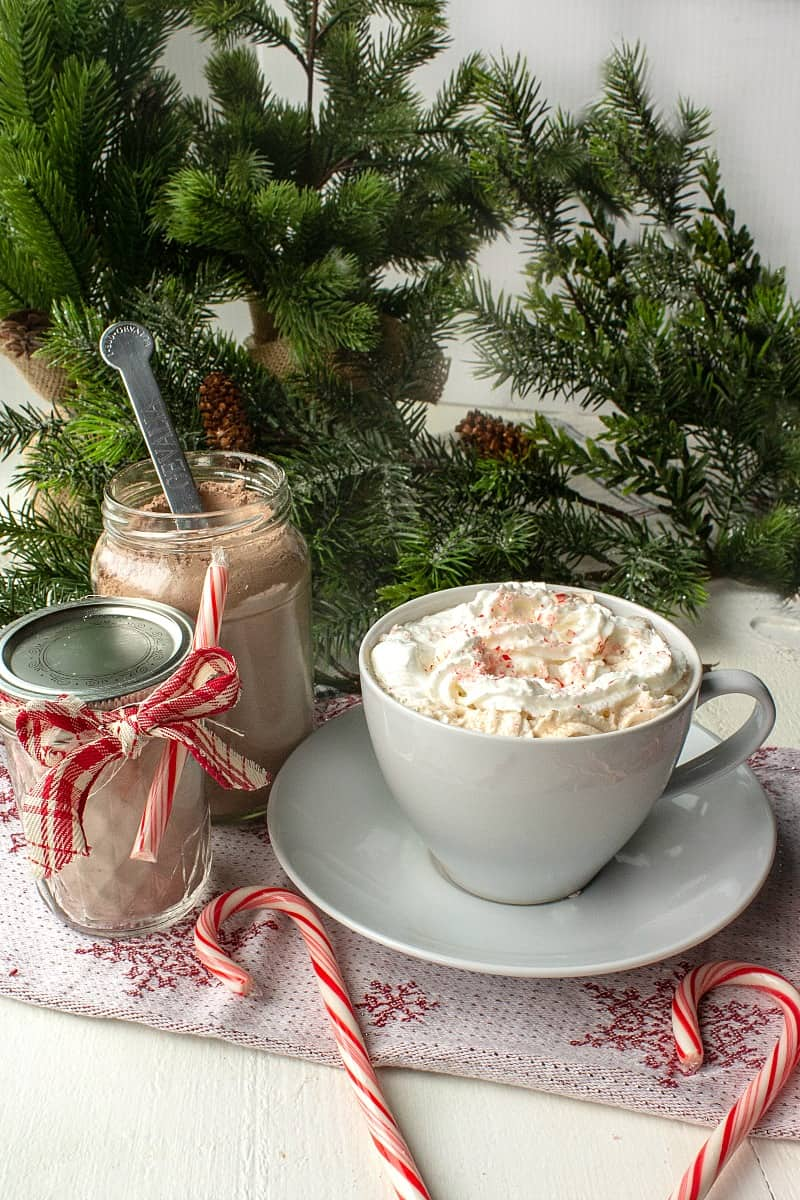 Make delicious and easy Peppermint Hot Chocolate Mix is minutes with cocoa, powdered milk and sugar.